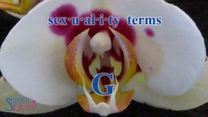 Sexual Terminology - G